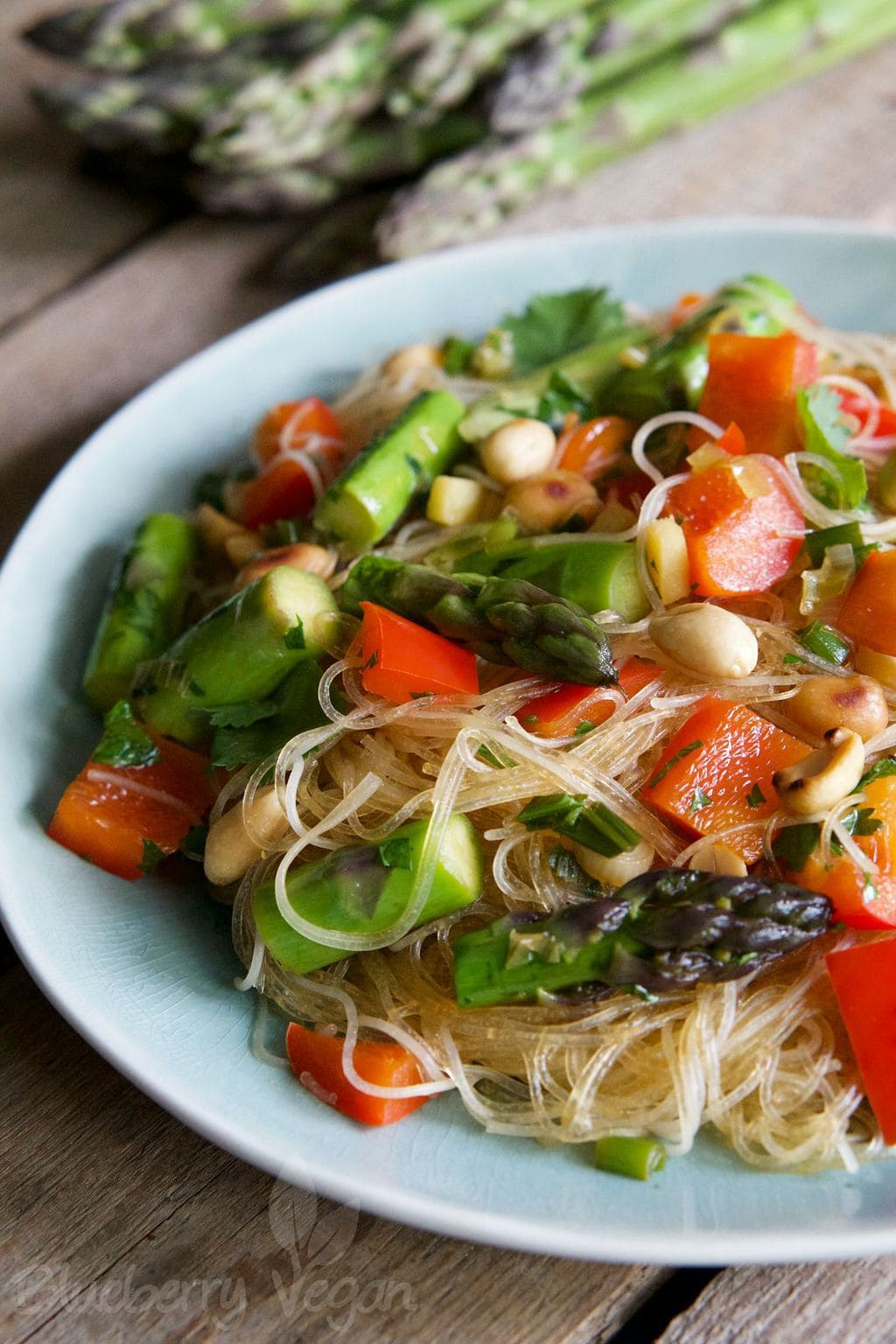 Asian Rice Noodle Salad with Asparagus