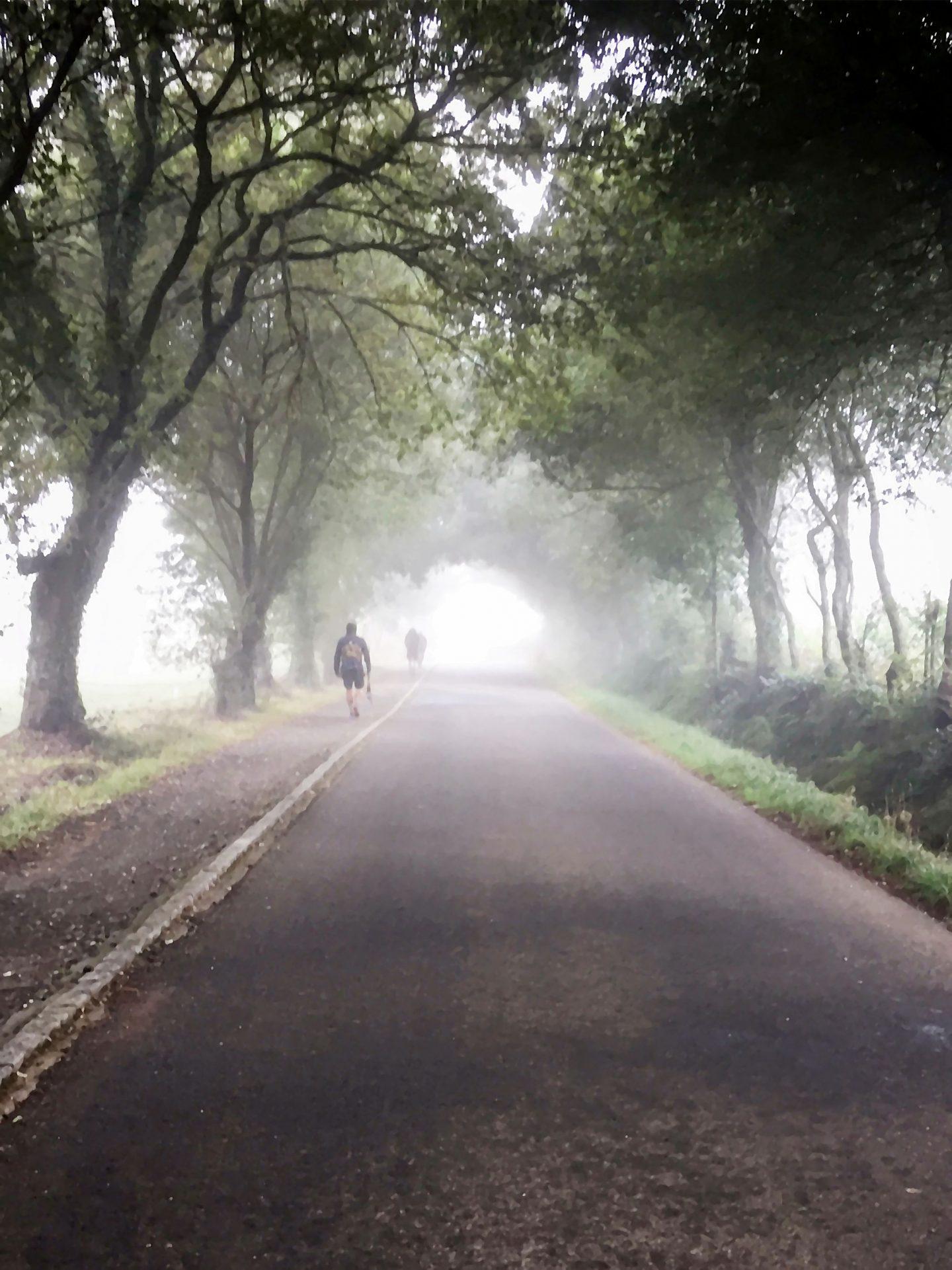 My Camino – From Portomarín to Palas de Rei