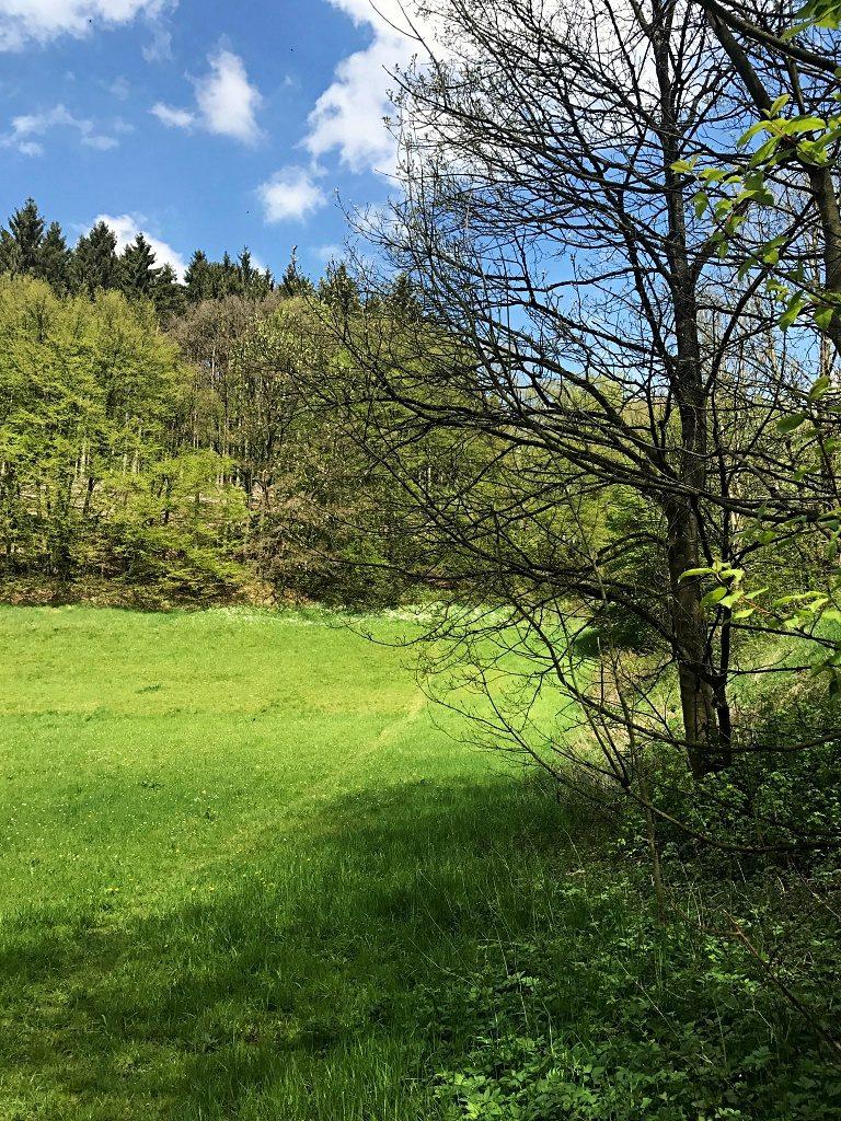 Wanderung in Wuppertal-Beyenburg und mein nächstes Wanderprojekt