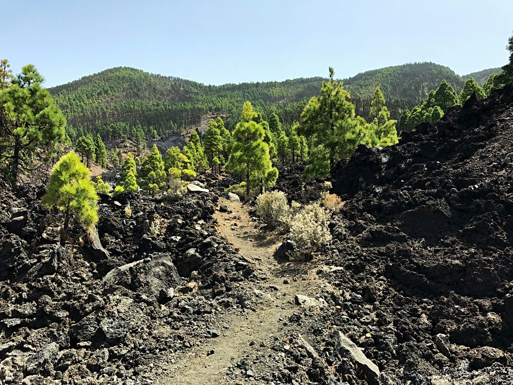 Hiking on La Palma – From San Nicolás to the Eruption of Volcano San Juan