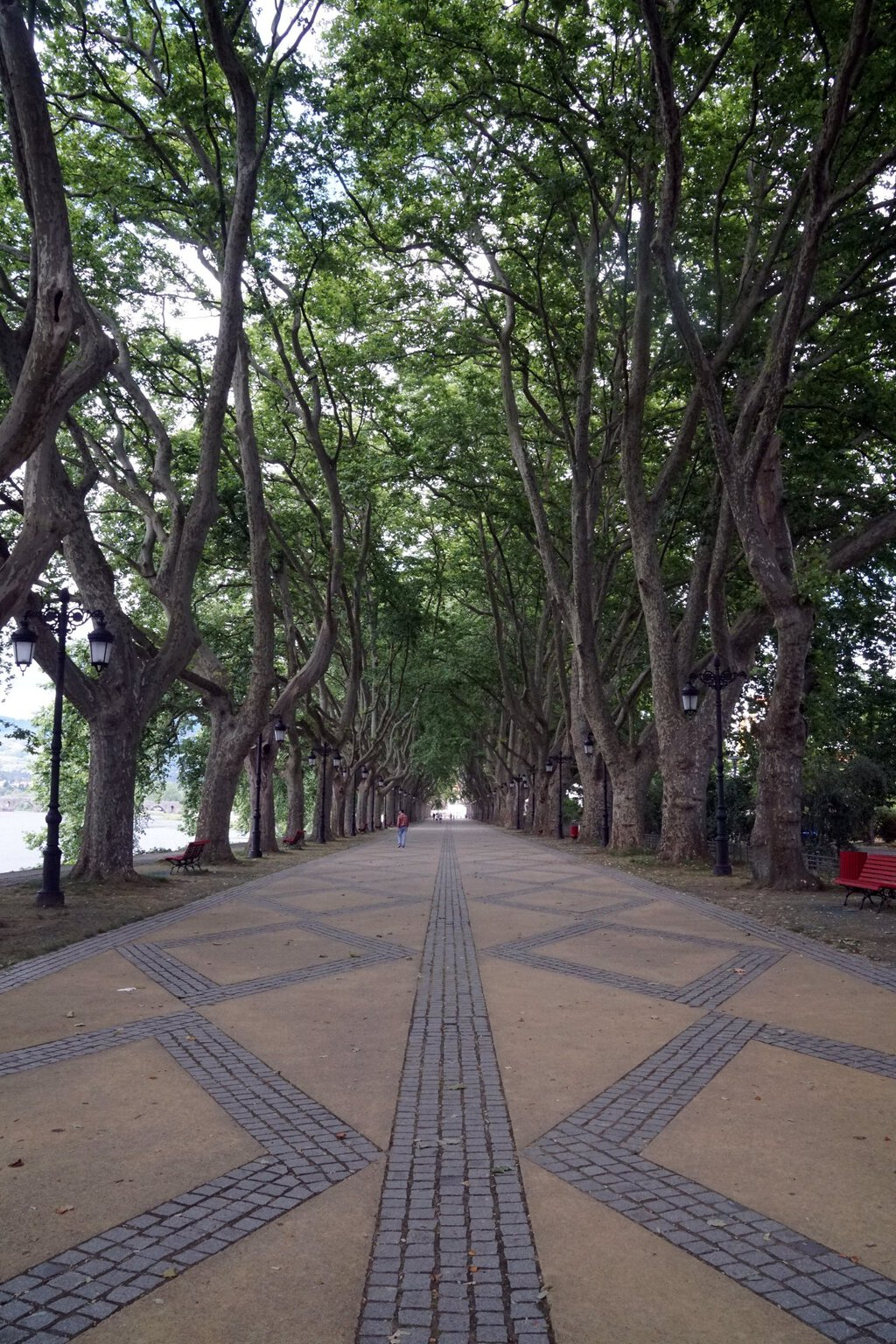 (Deutsch) Mein Camino Português – Von Barcelos nach Ponte de Lima