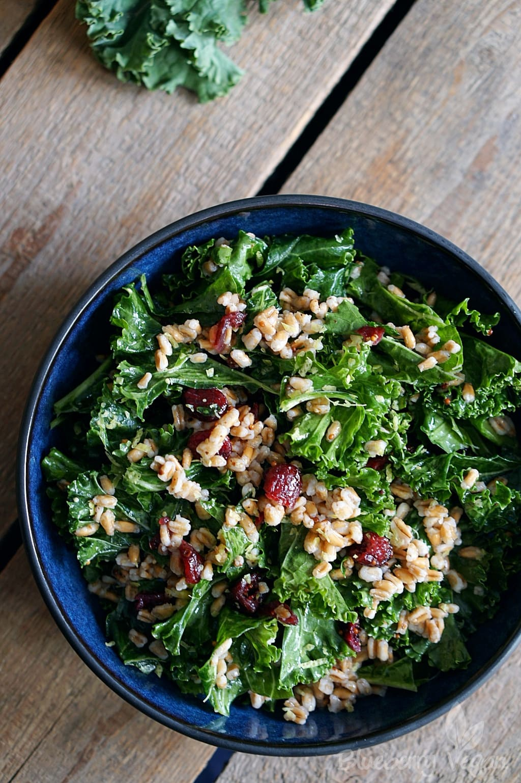 Warm Kale Salad with Grains and Cranberries